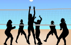 BeachVolleyBallCvrPg