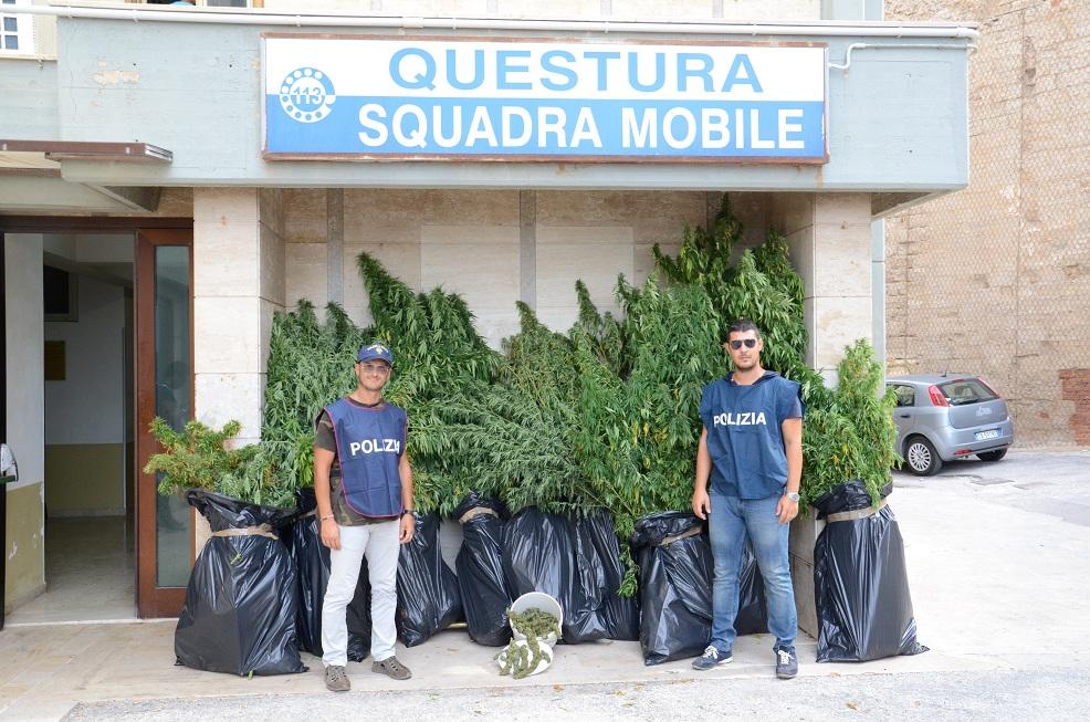 Mobile Trapani  Polizia (2) - sequestro bonafede