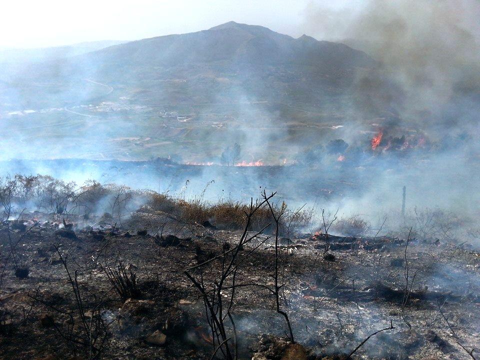 monte bonifato incendio 13 ottobre 2014 Alcamo
