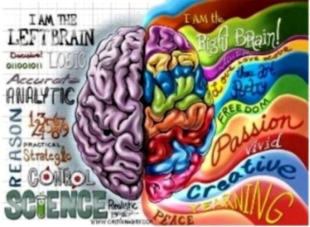 cervellosindex