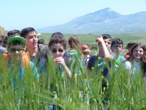 alunni nel campo di grano