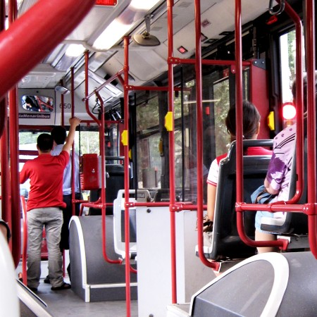rossosuatobus (2)