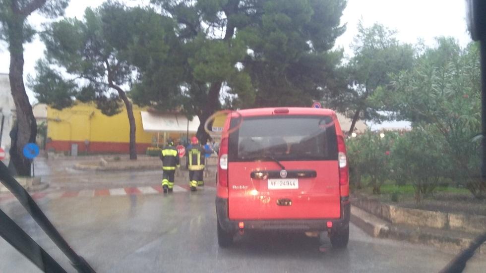 Caduta Albero Alcamo (2)