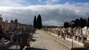 Cimitero alcamo