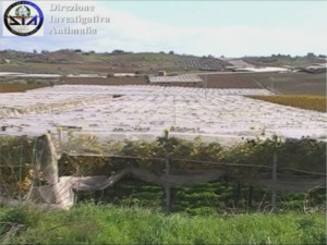 DIA sequestro Agrigentino