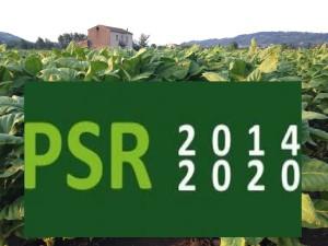 PSR_2014-2020