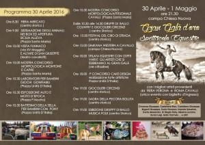 programma 30 aprile 16 corretto