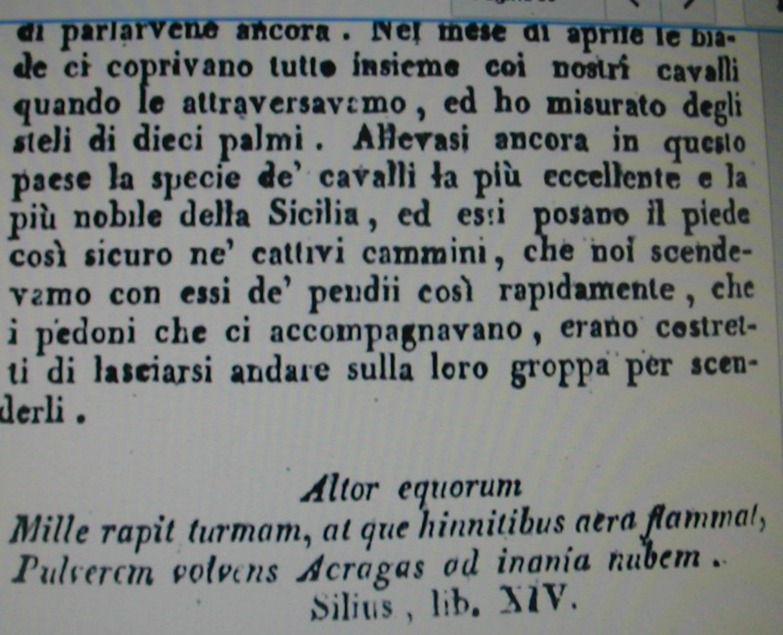 viaggio in sicilia trazzere 912