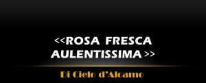 Ciullo D'Alcamo