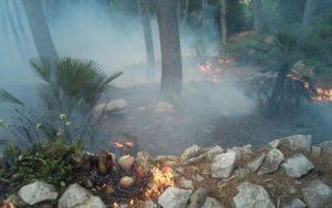 incendio 16 giugno2016b (2)