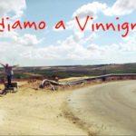 Enzo Amato - Andiamo a vinnignare 4