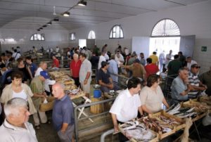 mercato del pesce trapani