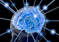 cerebrale