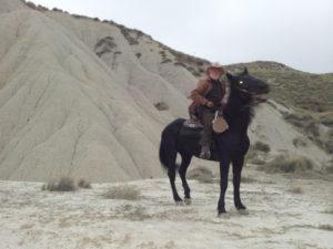 lo-monaco-cavallo