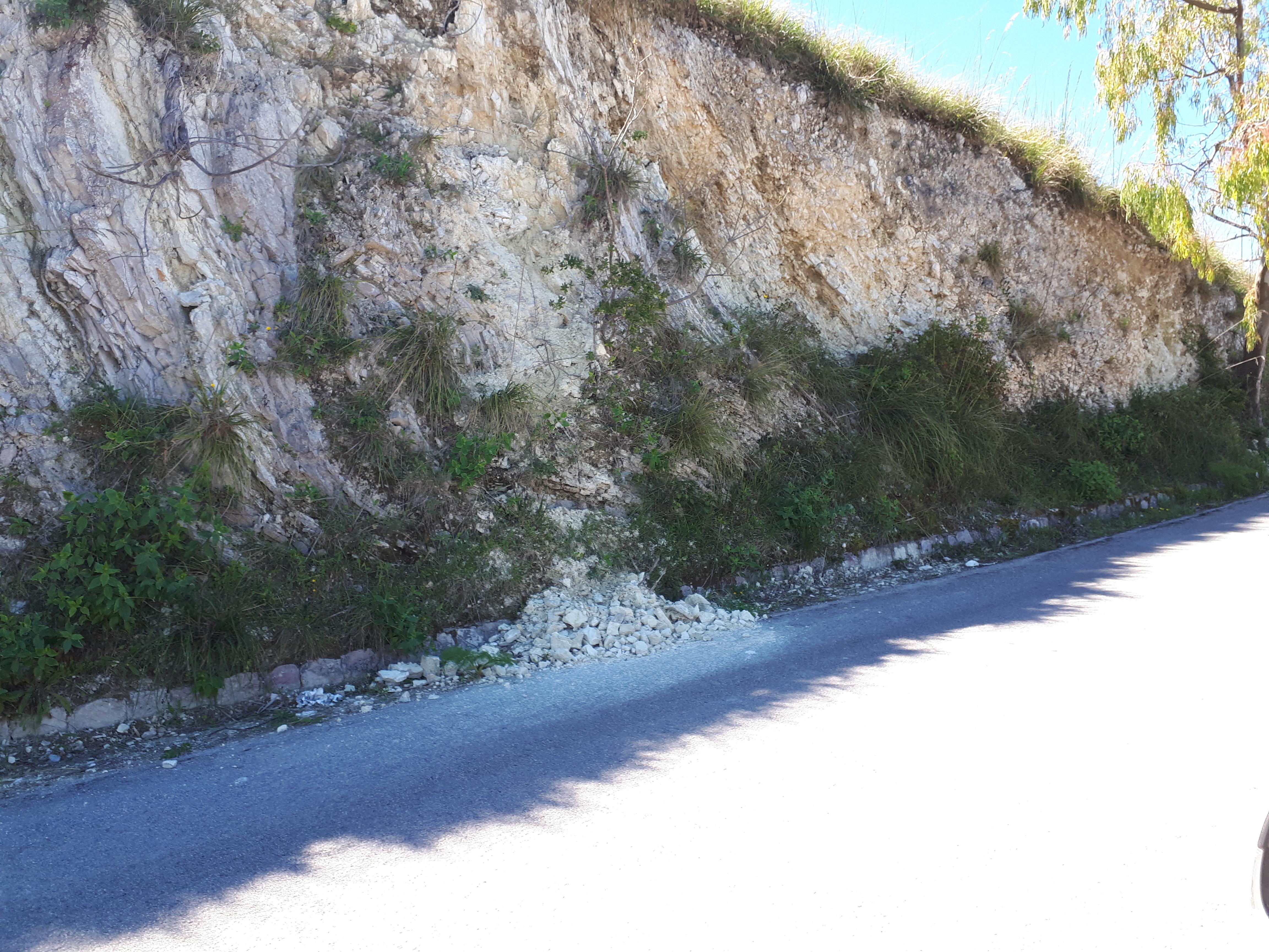 Monte Bonifato (5)
